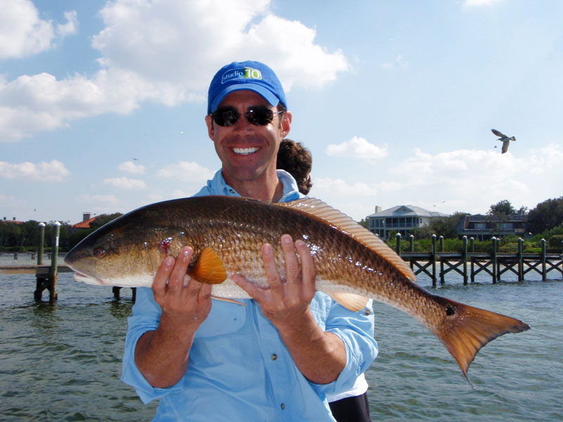 Tampa bay area fishing charters for Bay area fishing spots