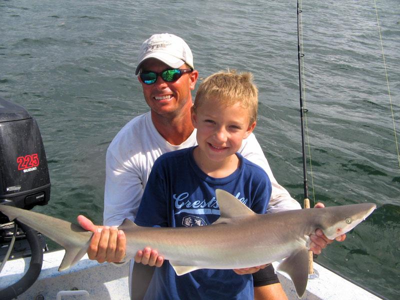Tampa bay shark fishing cast away charters for Put in bay fishing charter